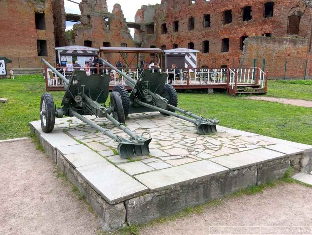 579. Пушки крепости Орешек